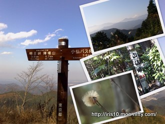 高尾山から相模湖へ