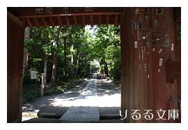 鎌倉・鶴岡八幡宮から寿福寺へ