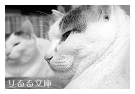 IMG_1309_01.jpg