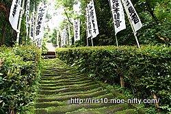 鎌倉・杉本寺・石段