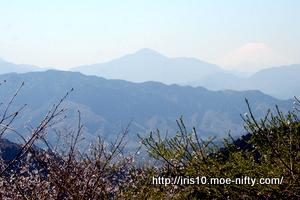 高尾山から富士山。