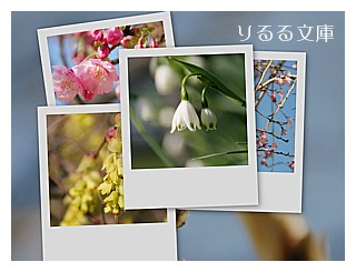 collage20080322.jpg