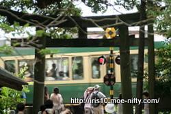 踏切・江ノ電・鳥居のコラボ