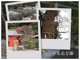 collage2008013004.jpg