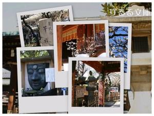 collage2008021501.jpg